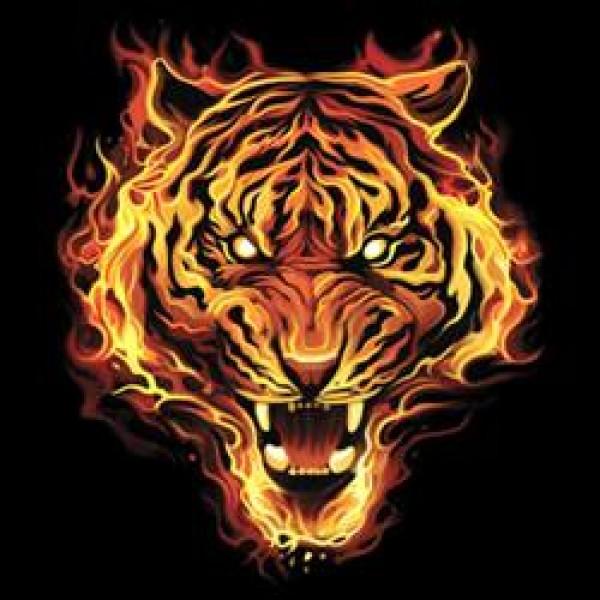 огнен тигър