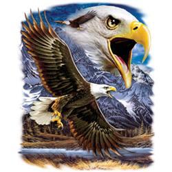 орел в полет