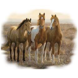 коне тройка