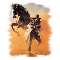 кавбой в пустиня