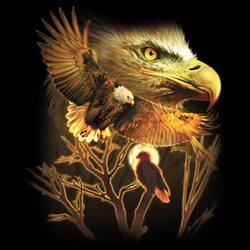белоглав орел