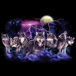глутница вълци среднощен лов